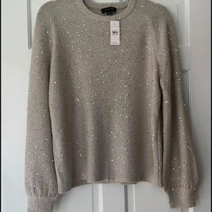 NWT Ann Taylor sequin sweater